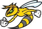 Angry_Hornet
